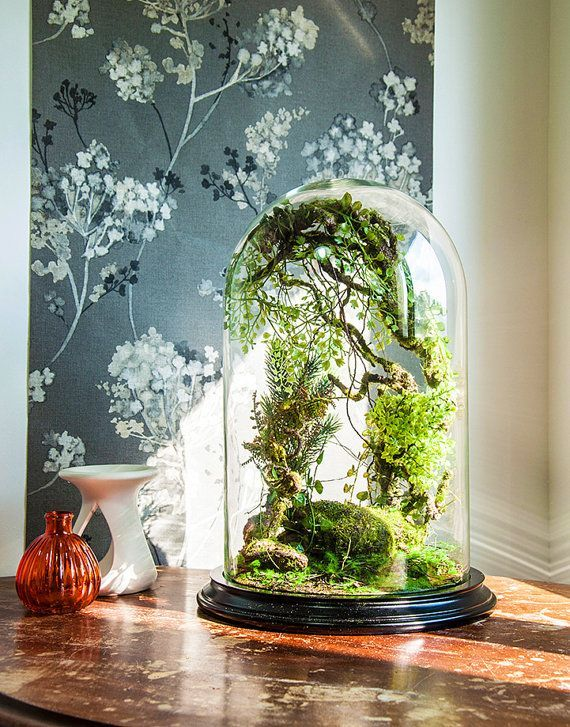 Forest terrarium of artificial plants, Cabinet of curiosity, dome Bell glass, anniversary gift wedding, Christmas decoration