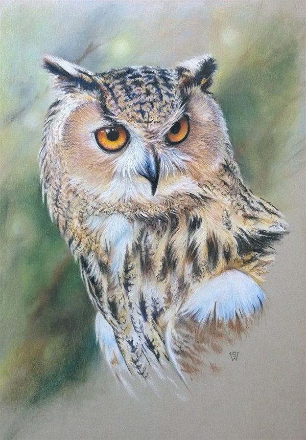 Eagle Owl by Sue Warner - pastel pencils