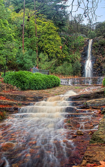 Beautiful Adelaide: Waterfall Gully 4 by Kenichi Ukiya, via Flickr #adelaide #waterfall