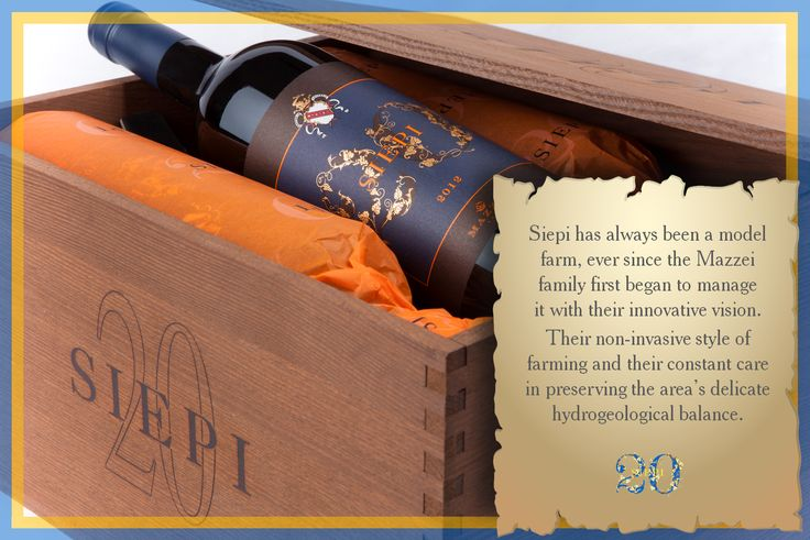 Da sempre Siepi è un podere modello, fin dall'inizio la famiglia Mazzei lo ha gestito con una visione innovativa, un agronomia non invasiva ed una grande attenzione verso il delicato equilibrio idrogeologico. #Siepi20 @marchesimazzei #mazzei #fonterutoli  #tuscany #wine