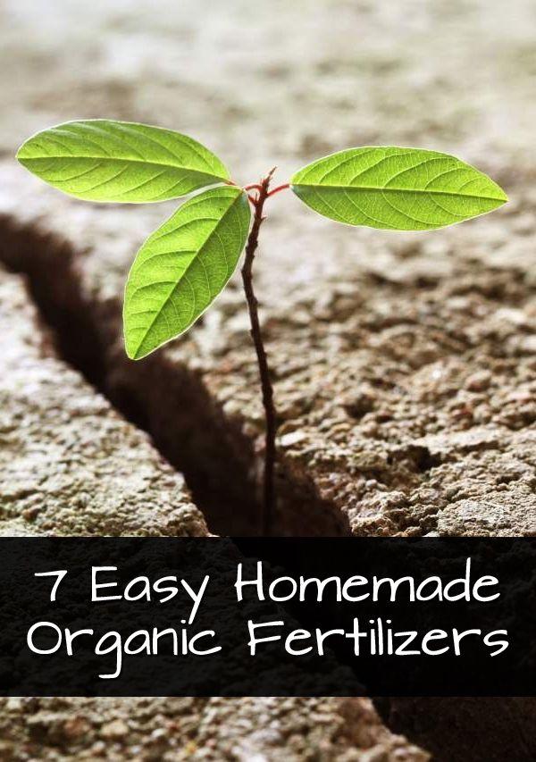 13 best gardening images on pinterest flower gardening garden ideas and gardening - Organic flower fertilizer homemade solutions ...