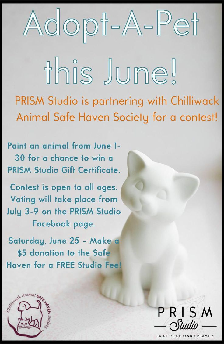 Chilliwack Animal Safe Haven Society - Events