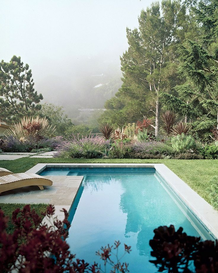 Swimming Pool Plants: 1000+ Ideas About Swimming Pool Landscaping On Pinterest