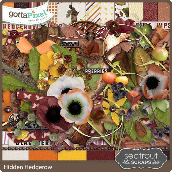 New Release: Hidden Hedgerow by Seatrout Scraps! A quintessential countryside fall Kit for scrapping all those autumn photos. Just $2.99 through Thursday. GottaPixel; http://www.gottapixel.net/store/product.php?productid=10030072&cat=&page=1. 09/09/2016