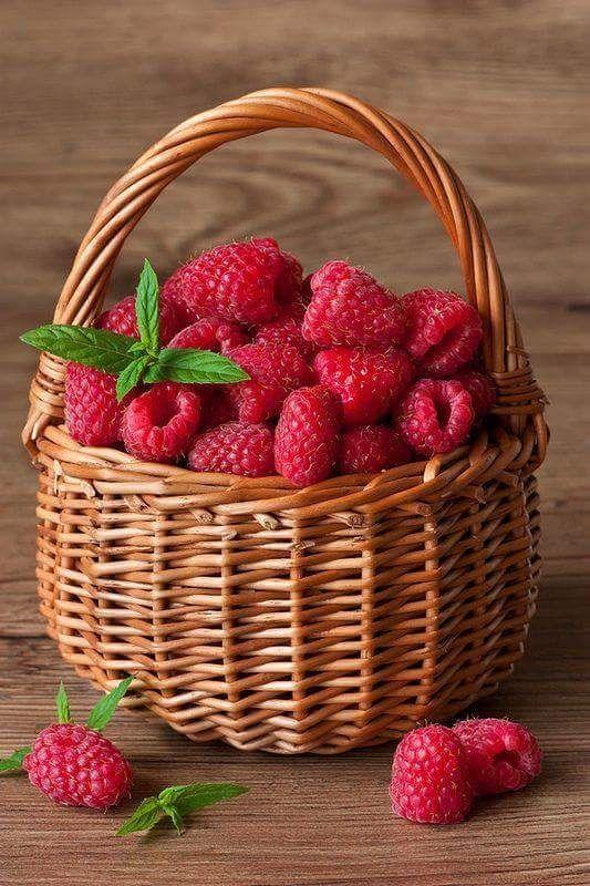картинки с ягодами очень красивые был маленьким, мама-кошка