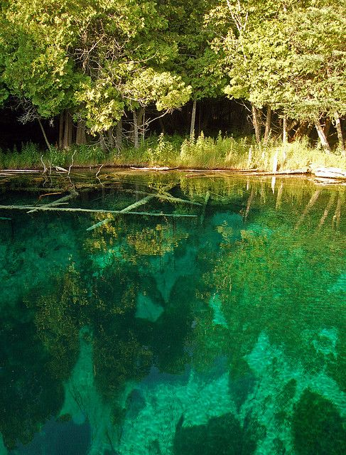 Kitch-iti-kipi Spring, Michigan's largest natural freshwater spring, USA (by I am Jacques Strappe).