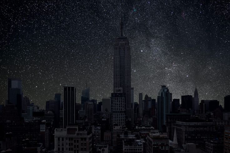 New York Turns Out the Lights | Audubon