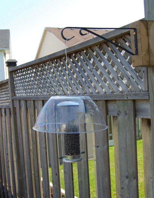 DIY squirrel proof bird feeder (the story is cute!)