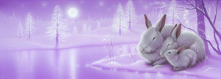 """""""Waiting for Spring"""" Rabbits - Art of Kentaro Nishino"""