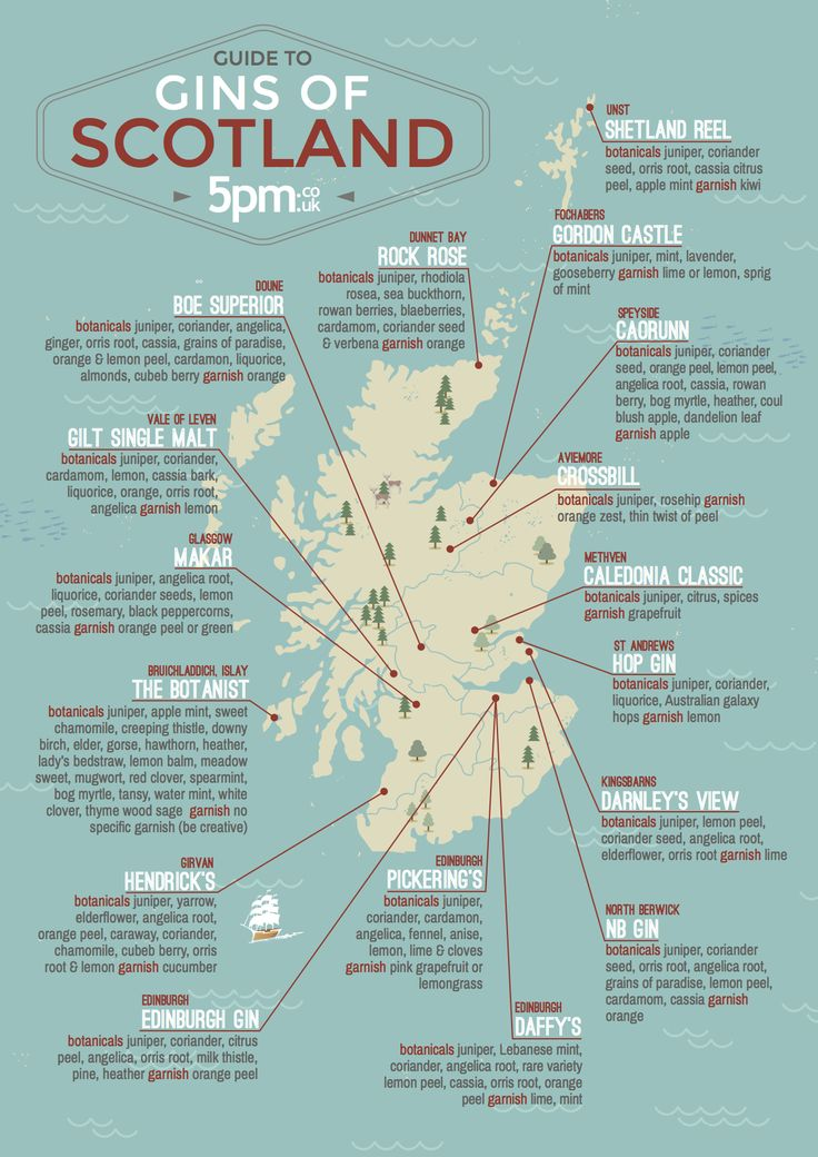 INFOGRAPHIC: Not Just Whiskey, Scotland's Gin Industry