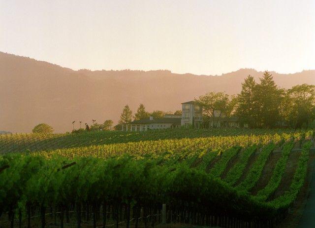 Hall Winery, Napa