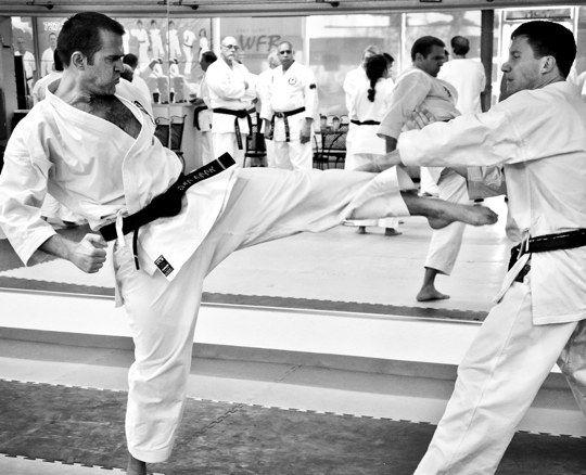 Karate Classes in Largo, Florida | Uechi Ryu Karate Classes