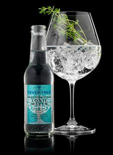 Fever Tree Mediterranean Tonic Water.  This is so amazing for vodka tonics--milder and crisp!  Love it.