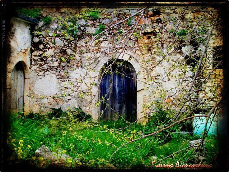 Η Αυλή του Μεϊμάρη...πού'χε ένα ψαρό μουλάρι...συντροφιά 'ντου όσο ζούσε...και το υπεραγαπούσε...