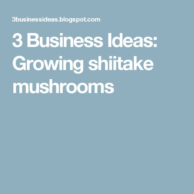 3 Business Ideas: Growing shiitake mushrooms