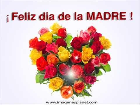 No Te Rindas Madre Feliz Dia De La Madre Frases De Consejos Y