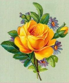 gold rose with purple flowers