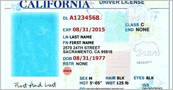 California Id Template Download Luxury Of California Drivers