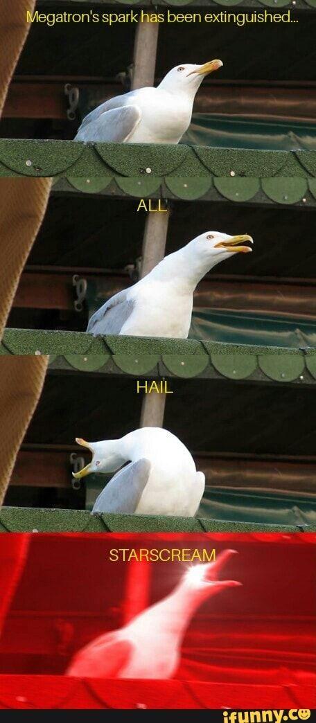 #transformers, #starscream, #seagull