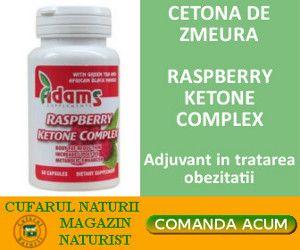 magazin online tip PLAFAR cu  :                               suplimente                               produse naturiste,                               vitamine                              tincturi                              loțiuni                              extracte naturale din plante                               creme                               etc.  Produsele comercializate provin direct de la producători și  de la cei mai mari distribuitori în domeniu, oferind astfel…