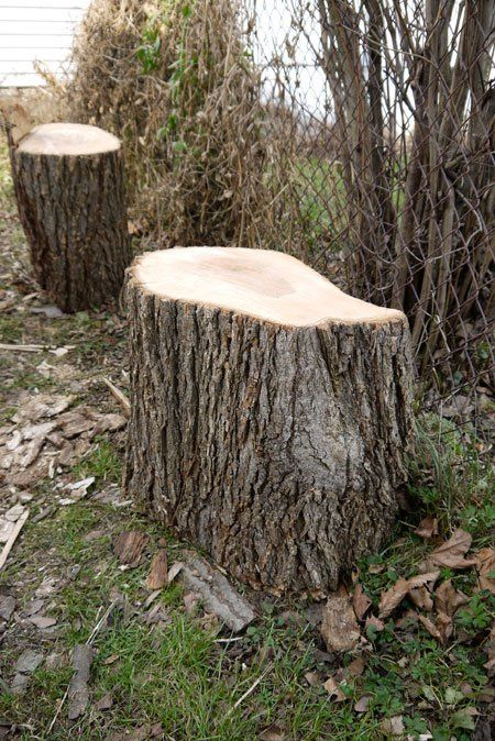 How To Make End Tables Out Of Tree Stumps - Downloadable Free Plans