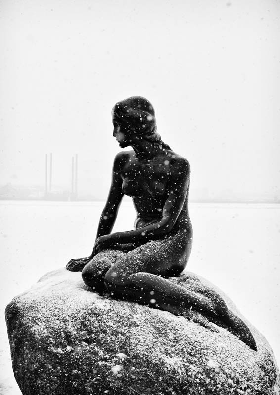 Den Lille Havfrue | Københaven The little mermaid in Copenhagen, Denmark.