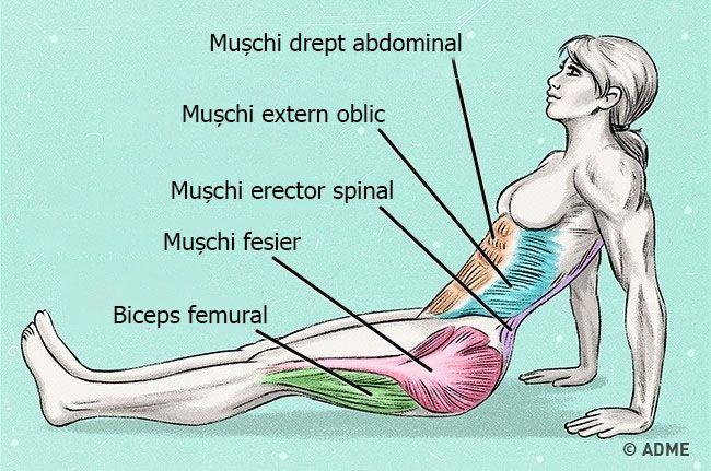 """Niciodată nu este târziu să începi să ai grijă de corpul tău. Dar pentru un efect cât mai rapid, trebuie să alegem un exercițiu cât se poate de eficient. Astăzi redacția noastră vă prezintă exercițiul """"plank inversat"""", care deocamdată nu e foarte cunoscut, dar este extrem de eficient. Instrucțiuni 1. Luați poziția șezând pe sol și îndreptați picioarele înainte. Așezați palmele pe sol în dreptul umerilor. 2. Ridicați corpul astfel încât de la umeri la călcâie să fie o linie dreaptă. 3. În…"""