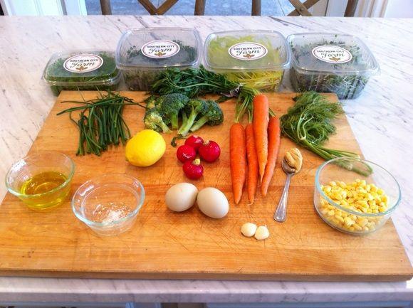 Microgreens Growing Journal - Microgreens | New Orleans