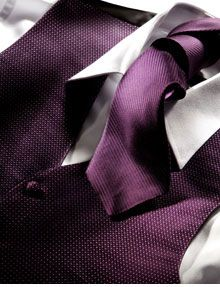 purple vestPurple Vest, Purple Ideas, Purple Ftw, Texture Purple, Purple Groomsmen, Black Shirts, Makin Plans