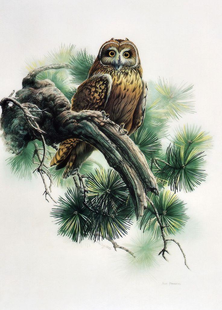 китайские картинки для декупажа совы него выглядит