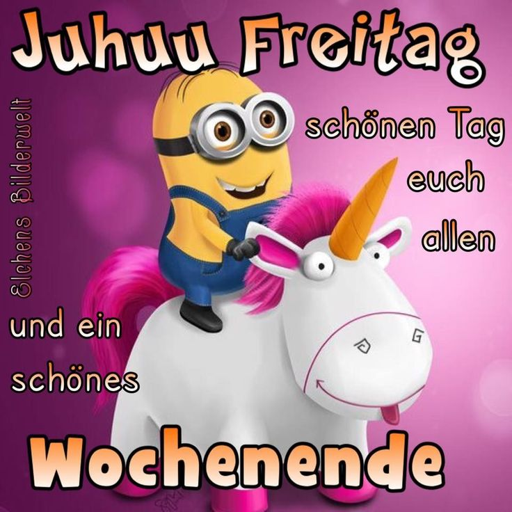 9 best montagsbilder images on pinterest funny pics funny sayings find this pin and more on guten morgen guten tag by birgit crews thecheapjerseys Gallery