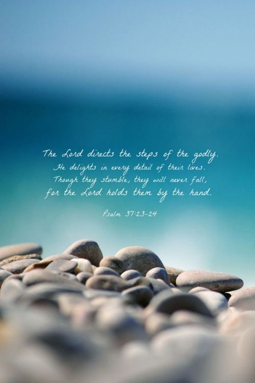"""""""The LORD makes firm the steps of the one who delights in him; though he may stumble, he will not fall, for the LORD upholds him with his hand."""" Psalm 37:23-24 NIV"""