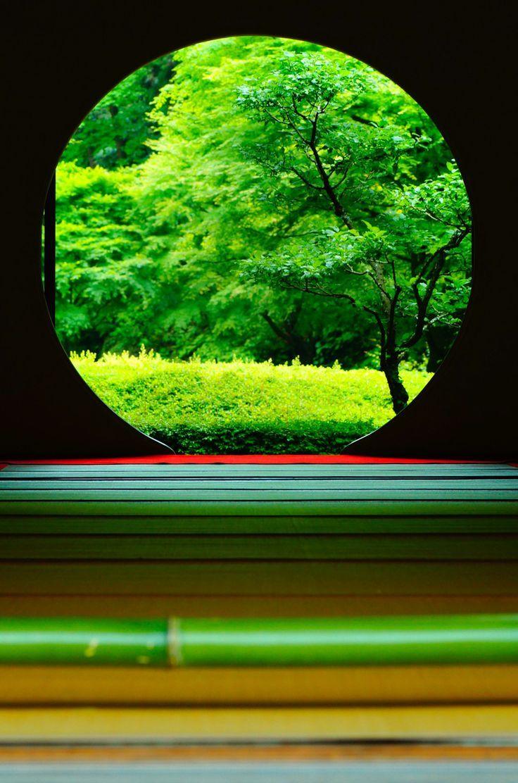 Meigetsuin, Kamakura, Japan viaαcafe My Sony Club