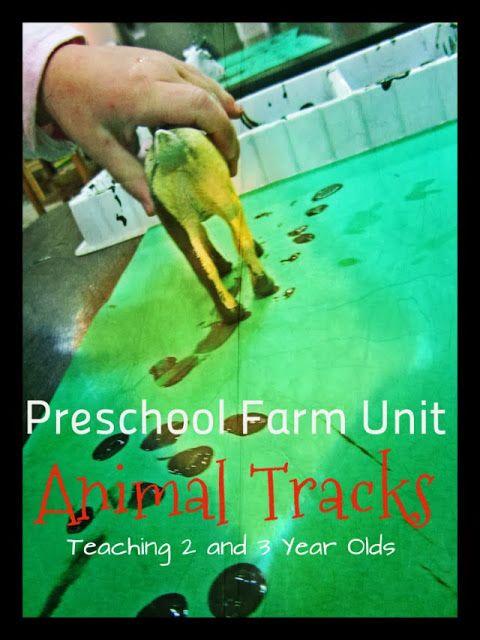 Teaching 2 and 3 Year Olds: Preschool Farm Theme: Animal Tracks