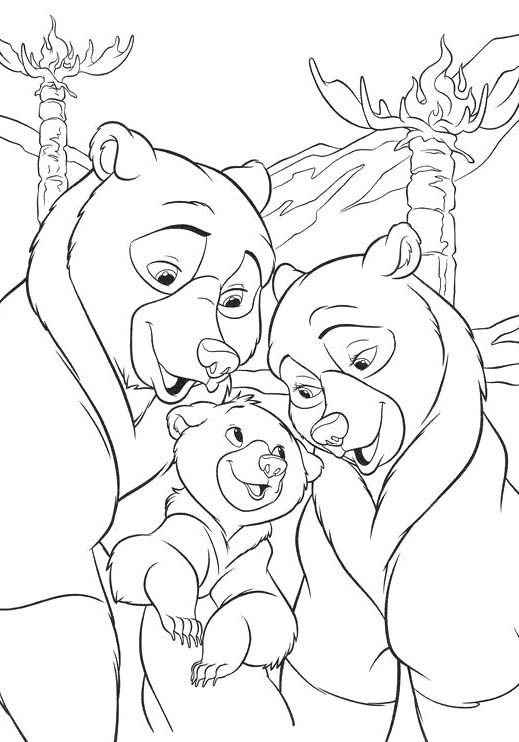 image Daddy bear and mother chum039s daughter love