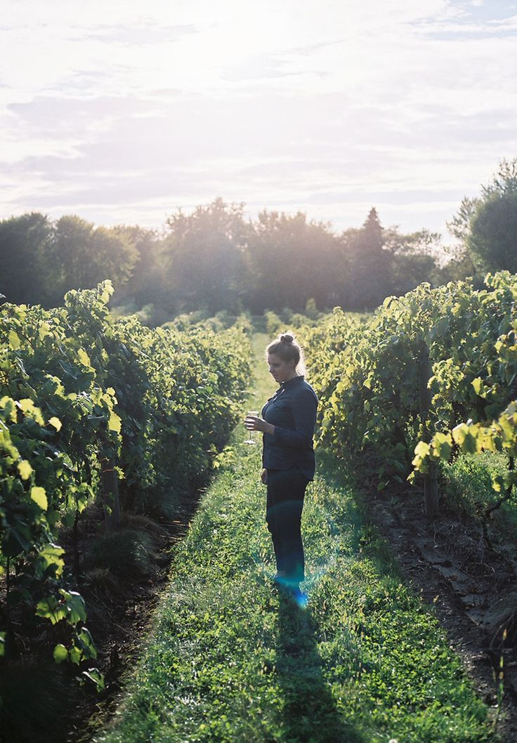 """Missouri is home to hundreds of wineries. Schedule a relaxing, romantic getaway to one of Missouri""""s quaint towns while taking in the beautiful fall scenery and the delicious wines the local wineries have to offer."""