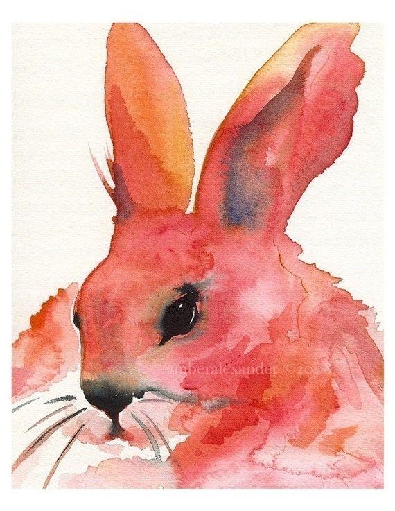 watercolor: Watercolor Painting, Watercolors Animal, Watercolors Birds, Rabbit Art, Amber Alexander, Bunnies, Precious Pumpkin, Pumpkin Pies, Watercolors Painting