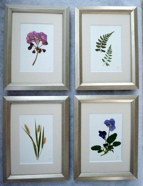 Framed Real Pressed Flower Botanical Herbarium by GardenGalleries