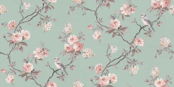bird song 40767   albany wallpapers   a grey trail with