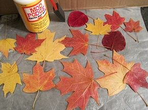 How To Preserve Fall Leaves using Mod Podge and Wax paper.  Would make a pretty journal page.