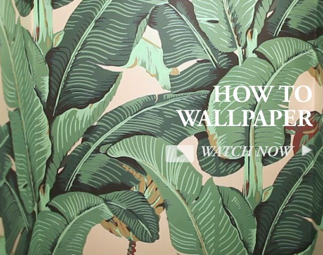 34 best images about beverly hills hotel wallpaper on pinterest charlotte olympia tropical. Black Bedroom Furniture Sets. Home Design Ideas
