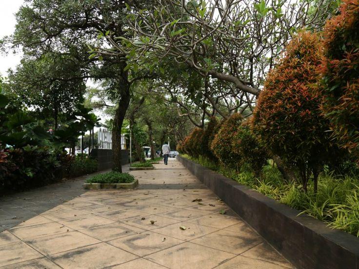 Rindangnya pepohonan di Jalan Taman Menteng