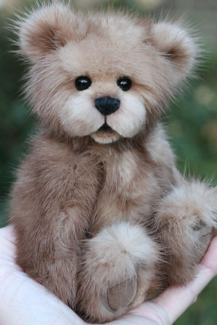 This is a mink teddy bear and he certainly has a beautiful smile. Adorable brown eyes too. Follow RUSHWORLD. We are on the hunt for everything you will love.