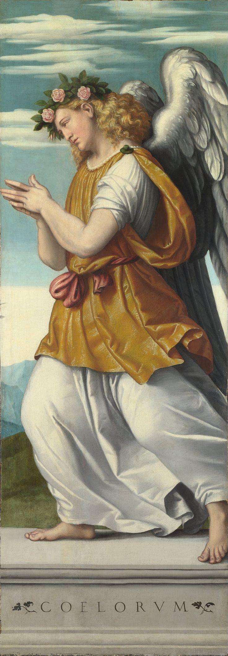 renaissance angels in art   ... :Moretto da Brescia - An Adoring Angel (1) - Google Art Project.jpg