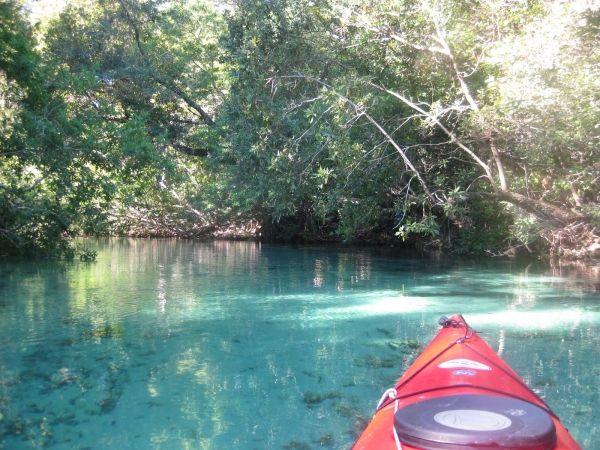 "Tampa Bay backwater paddling trip! That is on the ""To Do"" list with Yak Gear Brand Ambassador Derick Burgos of Phatfish Kayak Charters."