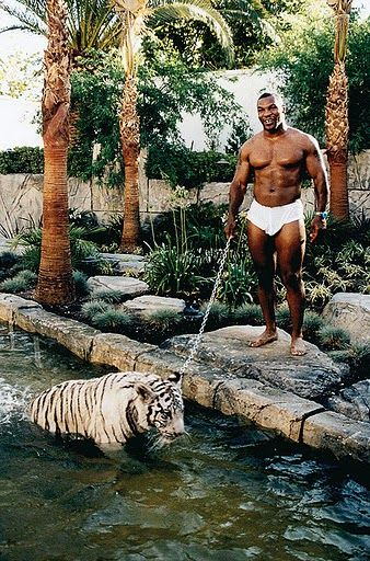 Mike Tyson and his pet cat.