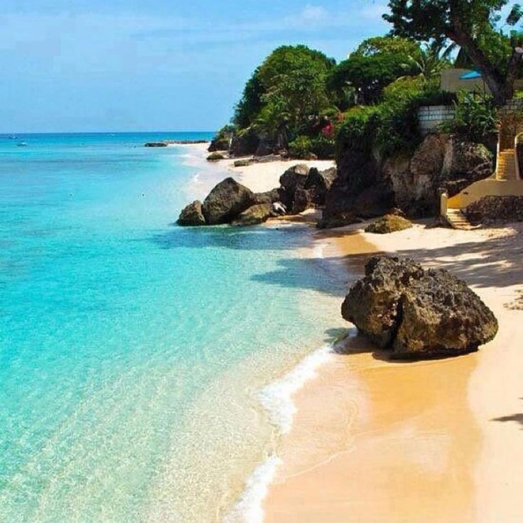 Caribbean Beach: 238 Best Barbados Images On Pinterest