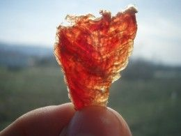 Making your own chicken jerky dog treats is one of the best things you ...