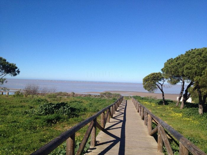 Playa de la Jara. Playa situada en un barrio residencial. Formada por una serie de pequeñas playas de arena fina y de gravilla y guijarros, es una playa tranquilla. Está protegida por un macizo rocoso, dunas y rompeolas artificiales.