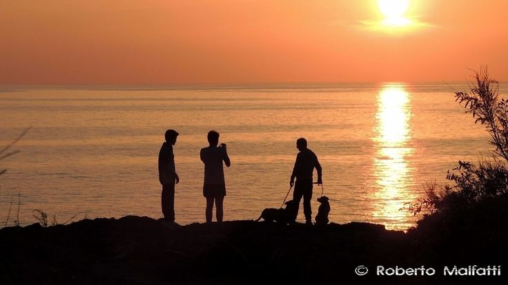 Silhouettes at sunset 9669 #sunset